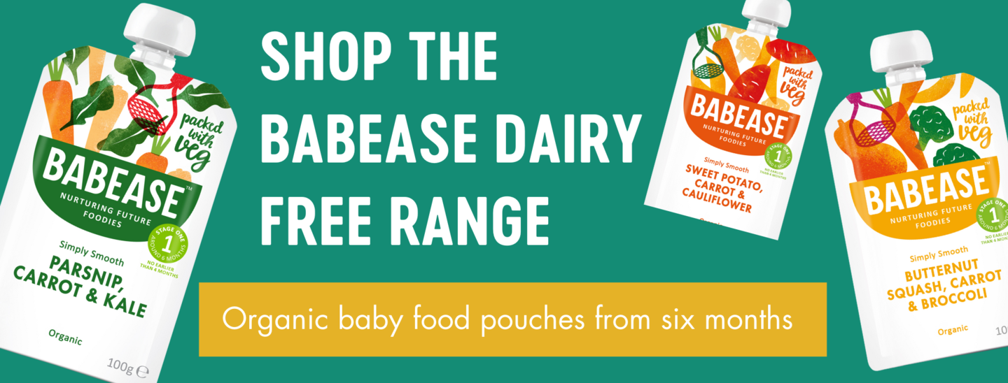 link to dairy free baby food