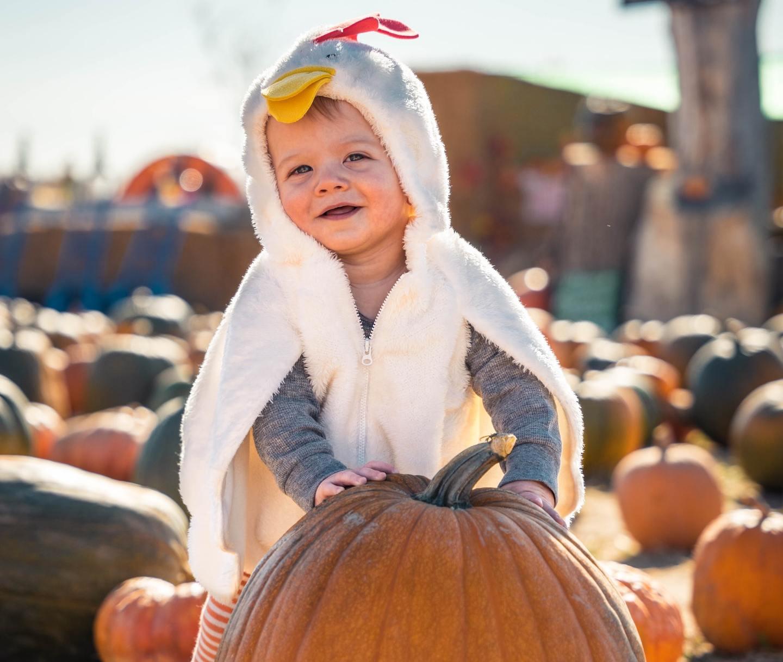 A child wearing a chicken costume in a pumpkin patch