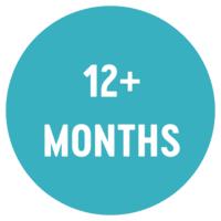 12+ Months