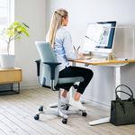 HÅG Creed 6003 Ergonomic Office Chair-Copy