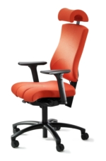 Hoganas Eco Small Ergonomic Chair
