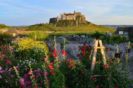 Island Castle Garden by Sandy Cox