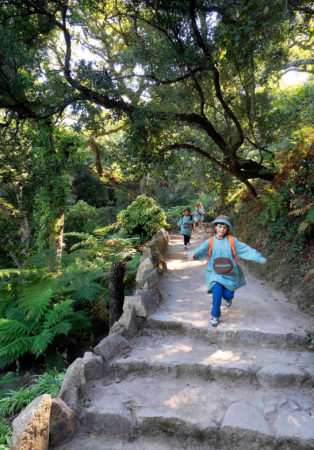 Parques de Sintra by Running Free by Marek Zylinski