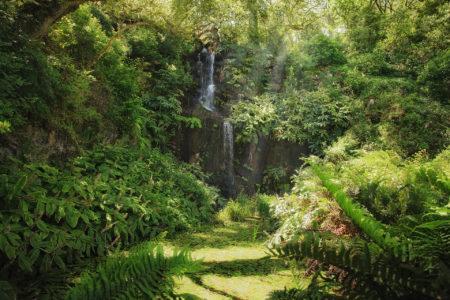 Parques de Sintra by Waterfall by Carole Anne Ferris