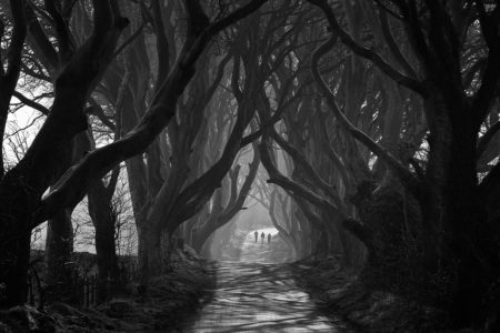 Three by Matthew Woodhouse