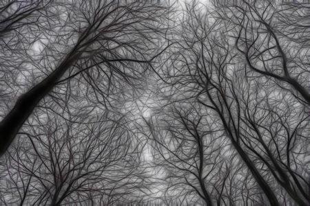 Reaching for the Sky by Ceri Jones