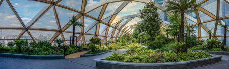 Crossrail Place Roof Garden by Simon Hadleigh-Sparks