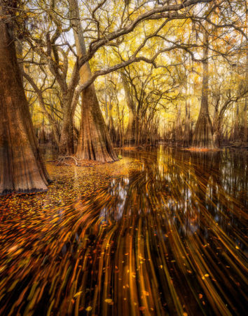 Suwannee Valley Streaks by Paul Marcellini