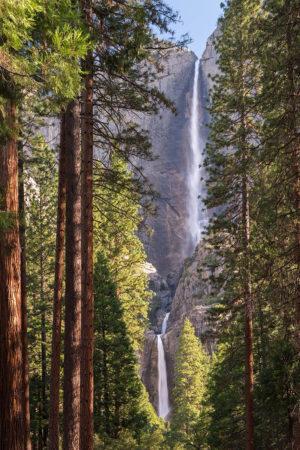 Waterfalls and Woodland by Adam Burton
