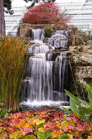 Water Feature by Pamela Shahlavi