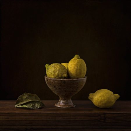 Study of Lemons by Inna Karpova