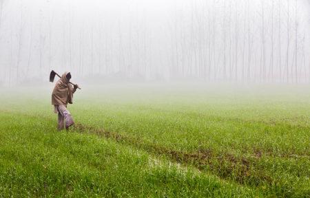 Morning Fog by Anil Sud