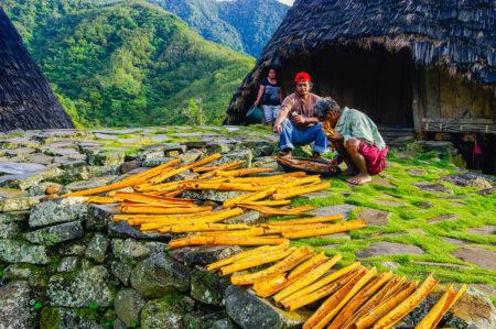 The Cinnamon Farmer by Suwandi Chandra