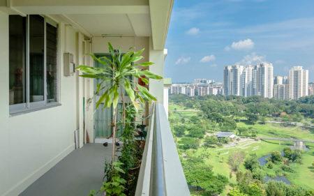 The Green Corridor by Siyuan Ma