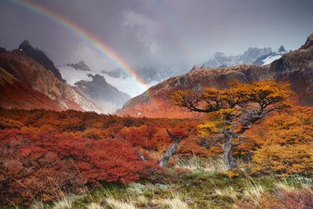 Autumnal Dream by Andrea Pozzi