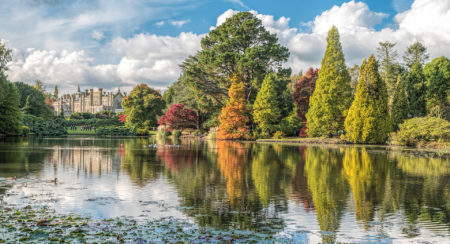 Sheffield Park by Dawn Blight