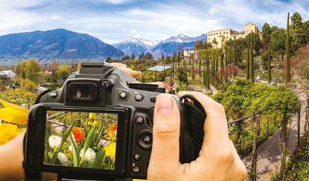 Exclusive Garden Photography Tour in Partnership with Fred.Olsen Travel