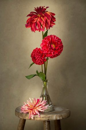 Vase with Dahlias by Sibylle Pietrek