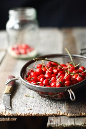 Making Rosehip Syrup by Beth Tilston