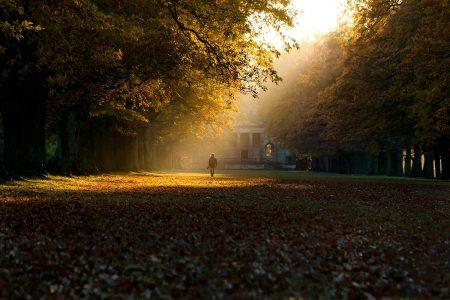 Autumn Day at Gibside by Tony Blackett