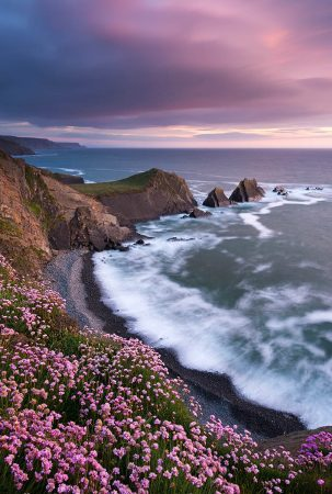 Atlantic Pinks by Adam Burton
