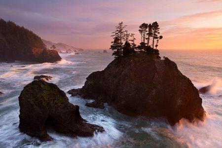 Rugged Oregon Coast by David Cobb