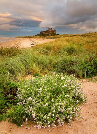 Bamburgh by Geoff Kell