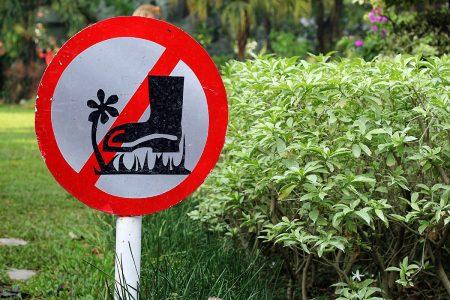 Prohibited by Patria Prasasya