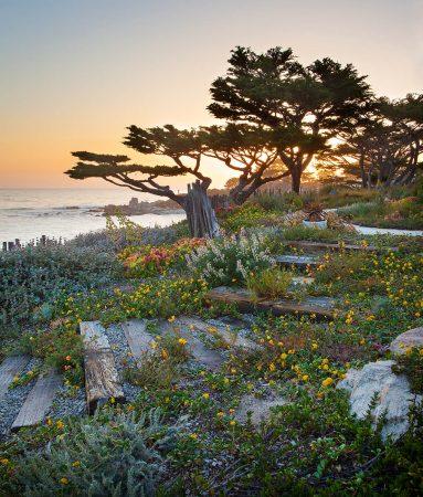 Native Coast by Jason Liske