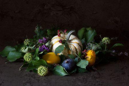 Cucurbitaceae by Sonia Adelinet