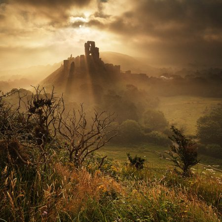 Corfe Castle in Summer Mist by Andy Farrer
