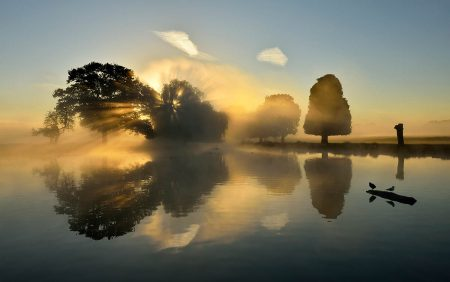Morning in Bushy Park by Kasia Nowak