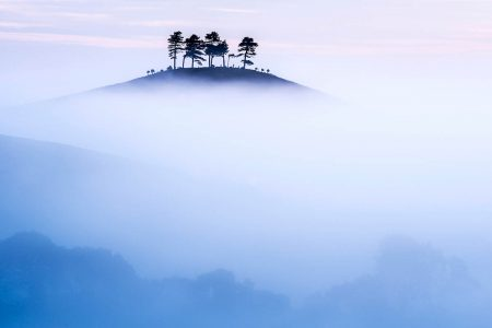 Colmer's Hill by Ross Hoddinott