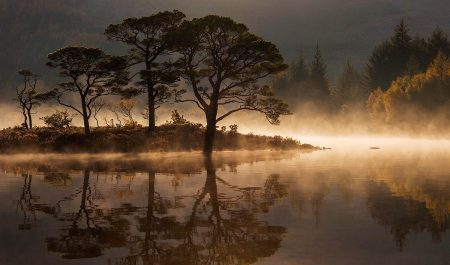 Loch Maree Mist by Andrew Jones