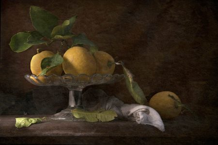 Lemons by Flavio Catalano