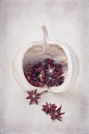 Star Anise by Christina Heinz