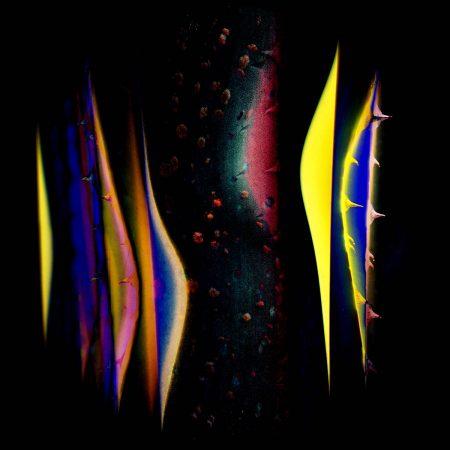 Neon Cacti by John Charles Maloney
