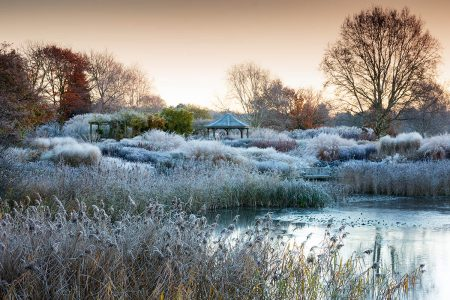 Hoar frost at Pensthorpe by Richard Bloom
