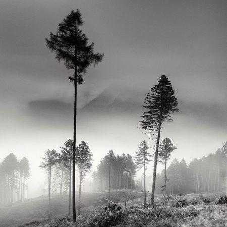 Moving Atmosphere by Pierre Pellegrini