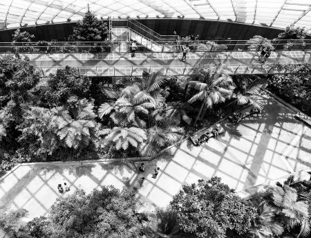 Inside the Greenhouse by Stephen Studd