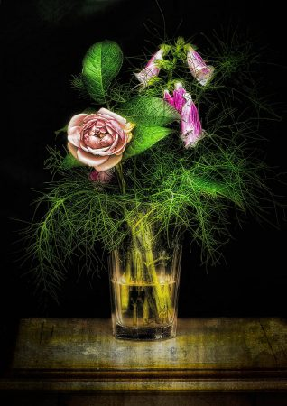 In a Glass Darkly by Robert Love