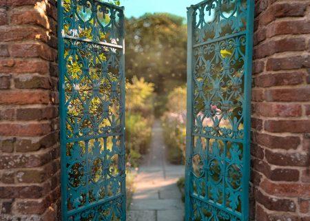 The Secret Garden by Monika Tymanowska
