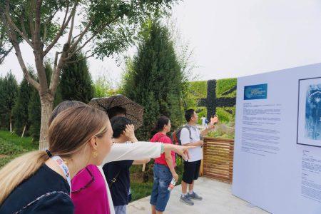 Beijing Horticultural Expo (2019)