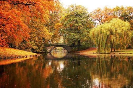 Magical Autumn Colours by Herle Catharina Saathoff