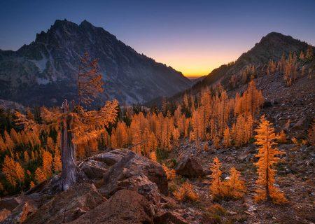 Larch Basin Dawn by Thorsten Scheuermann