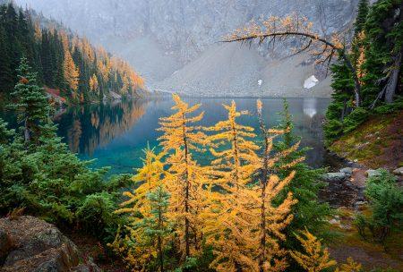 Blue Lake Larches by Thorsten Scheuermann