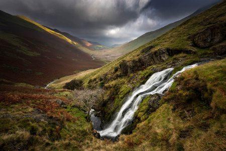 Moss Force Autumn by Stuart McGlennon