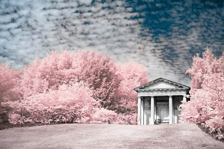 Kew in Pink by Clare Collins