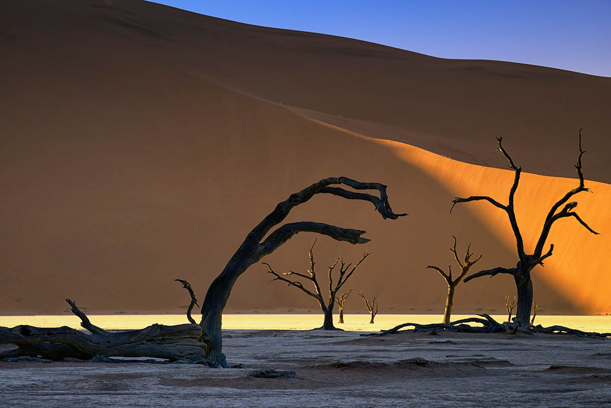 Deadvlei IV by Richard Murphy
