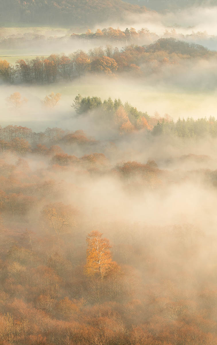 The View from Yew Crag by Jon Martin